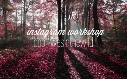 instagramworkshop