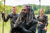 "PREVIEW: 'The Walking Dead' Season Seven, Episode Ten ""New Best Friends"""