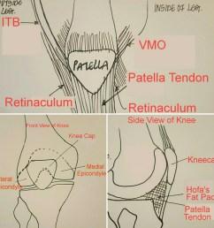 front of the knee diagram [ 900 x 900 Pixel ]