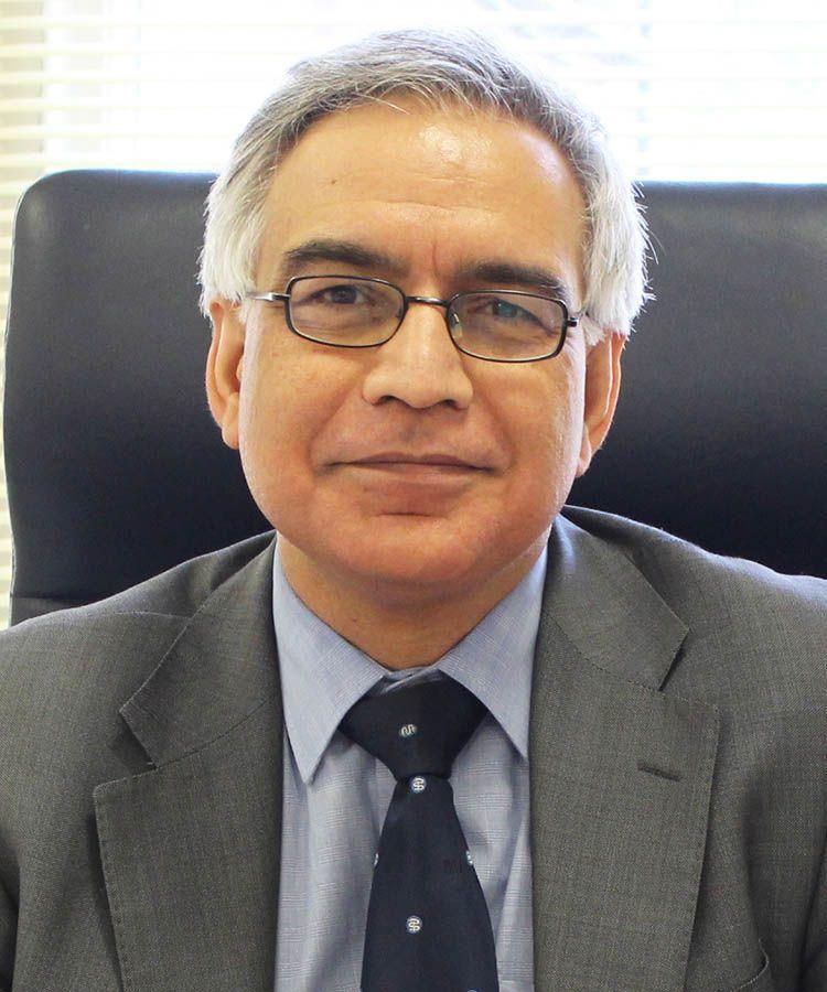 Prof Ram Dhillon