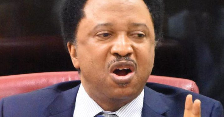 Buhari's huge failure reason Nigerians are appreciating Jonathan – Shehu Sani