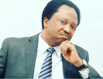 #EndSARS: Govt making peace with left hand, pushing thugs with right hand – Shehu Sani