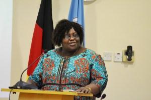 Professor Henrietta J. A. N. Mensa-Bonsu, the University of Ghana, Legon