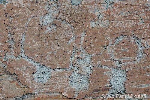 bronzezeitliches Piktogramm im Vallée des Merveilles