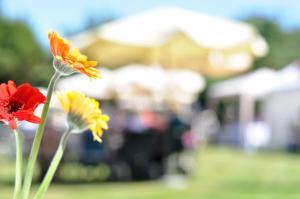 Glenhurst Manor Garden Party