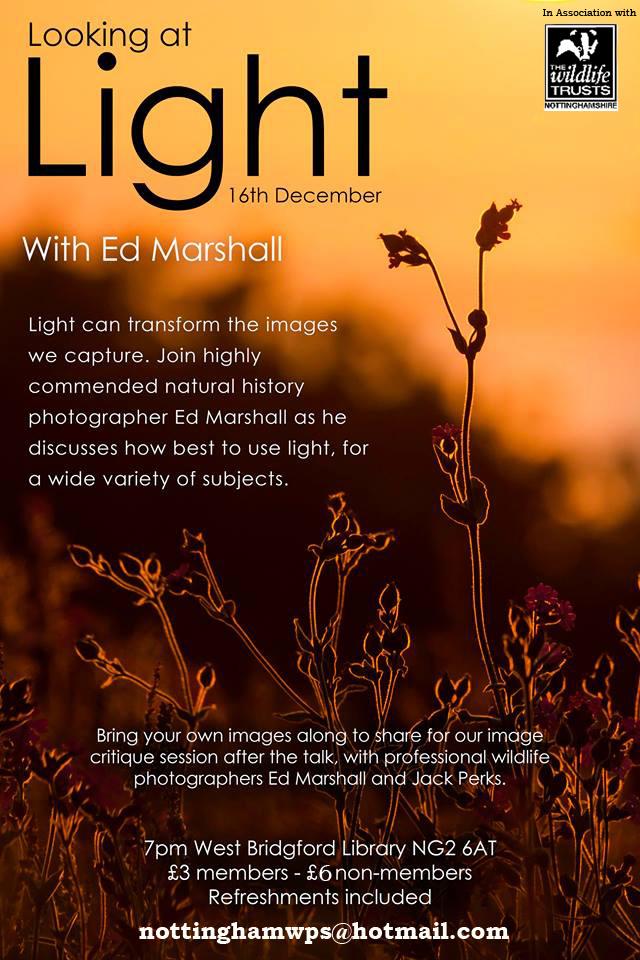 Looking at Light, Nottingham Wildlife Trust December 2014