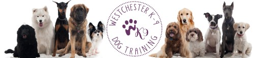 Westchester K-9 Dog Training | 914 393 2346