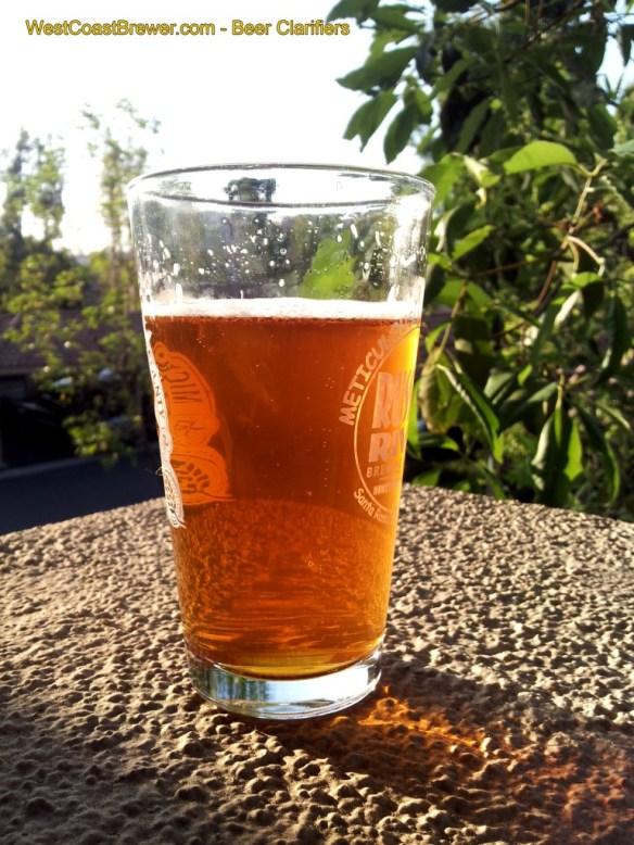 Beer Clarifier