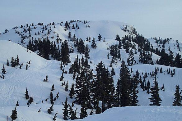 Hike Report: Mount Seymour Winter Trail