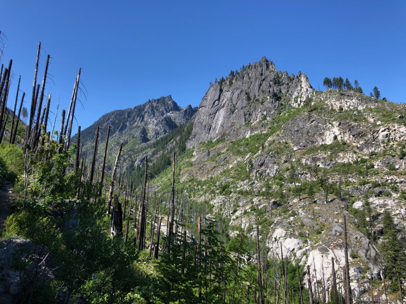 Steep rock wall above a burnt forest
