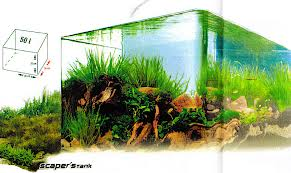 dennerle scaper's tank