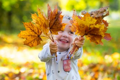 Happy little girl holding autumnal leaves