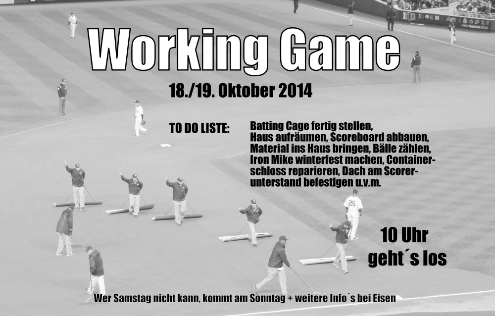 Working Game 2014