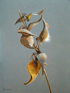 "Thomas S. Buechner ""Milkweed Pods"" 14x10 oil $2,570. framed"