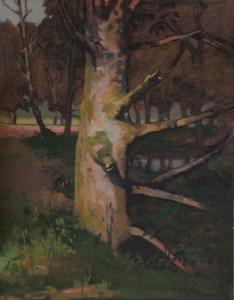 "Thomas S. Buechner ""Tree by Poshingers"" 14x11 unframed oil $2,420."