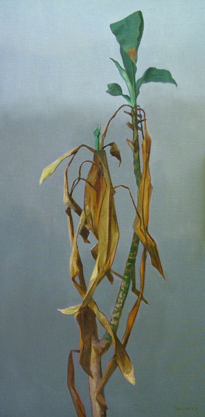 "Thomas S. Buechner ""My Old Plant"" 36x18 oil framed $5,130."