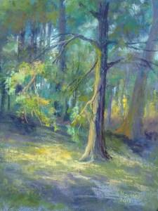 "Linda Hansee ""Sunlit Woods"" 12x9 pastel $350."