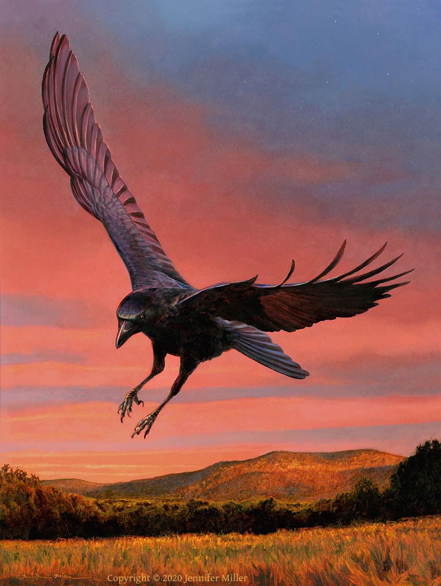 "Jennifer Miller ""Drifting Into Evening"" (Crow) 16x12 oil $2,000. SOLD"