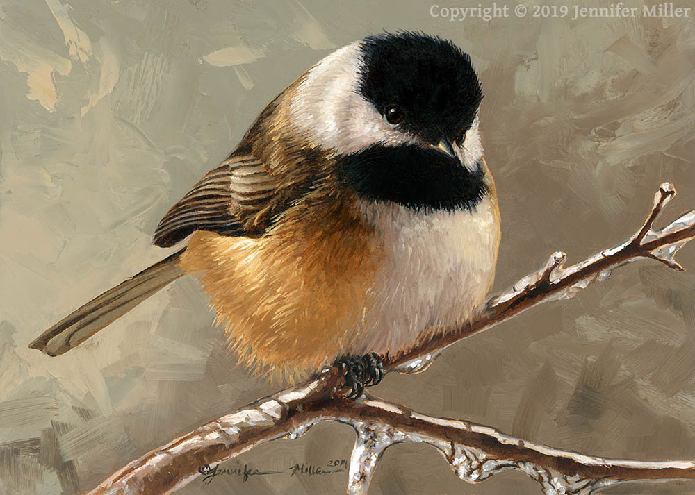 "Jennifer Miller ""Icy Perch - Black-Capped Chickadee"" 5x7 oil $375. SOLD"