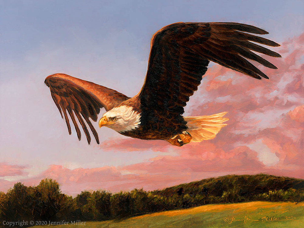 "Jennifer Miller ""A Good Evening"" (Bald Eagle) 6x8 oil $490. SOLD"