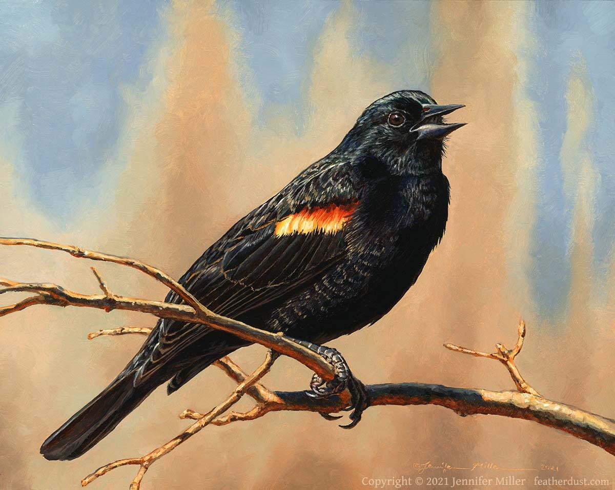 MillerNewNeighborRedWingedBlackbird - 2021 Spotlight: Jennifer Miller