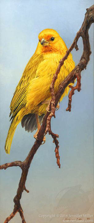 """Jennifer Miller """"Saffron Cascade"""" 14x6 oil $900."""