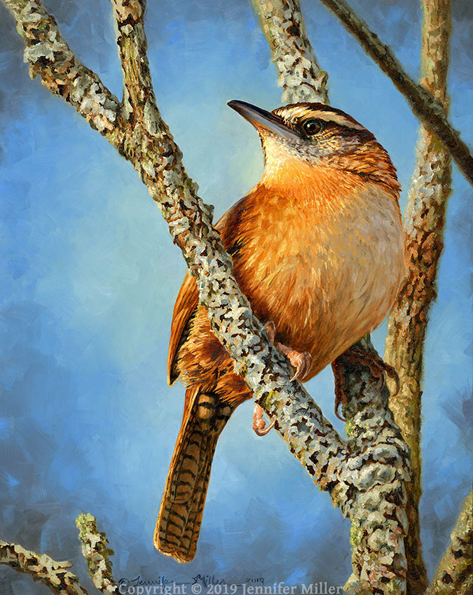 """Sentinel - Carolina Wren"" 10x8 oil $850. SOLD"