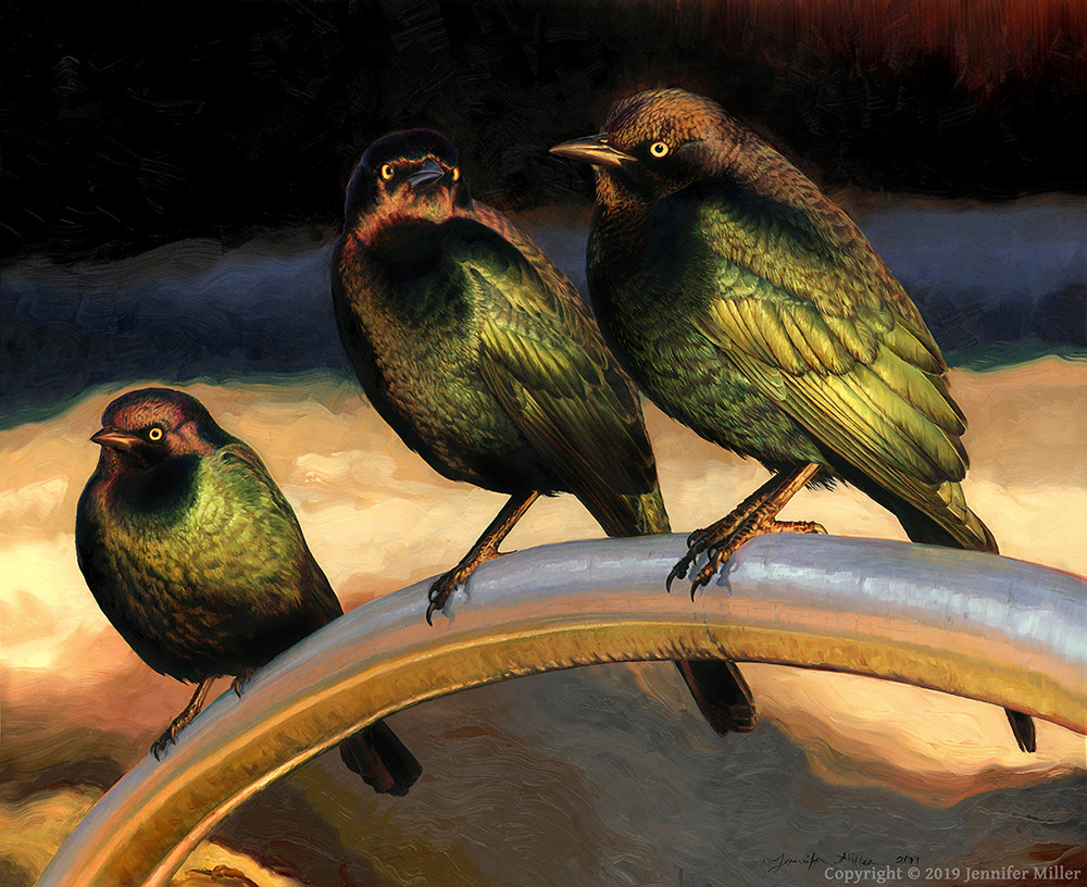 "Jennifer Miller ""Turbulence - Brewer's Blackbirds"" 21x26 oil painting $4,000."