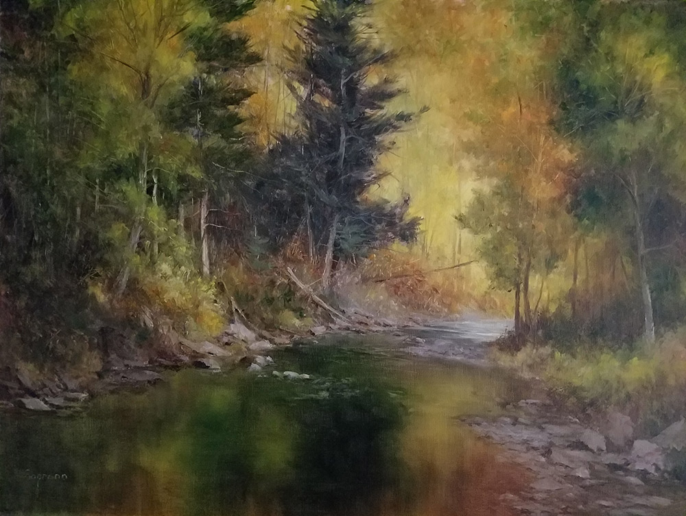 "Judy Soprano ""Seneca Lake Outlet"" 18x24 oil $900. SOLD"