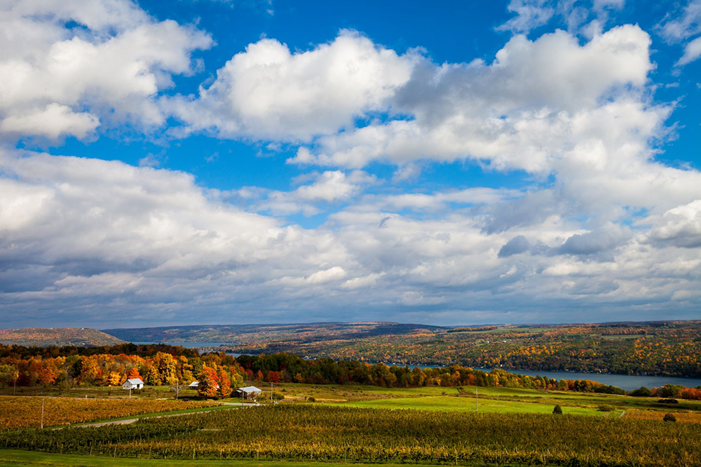 "Chris Walters ""Keuka Lake Fall"" Inquire for availability and additional ordering options"