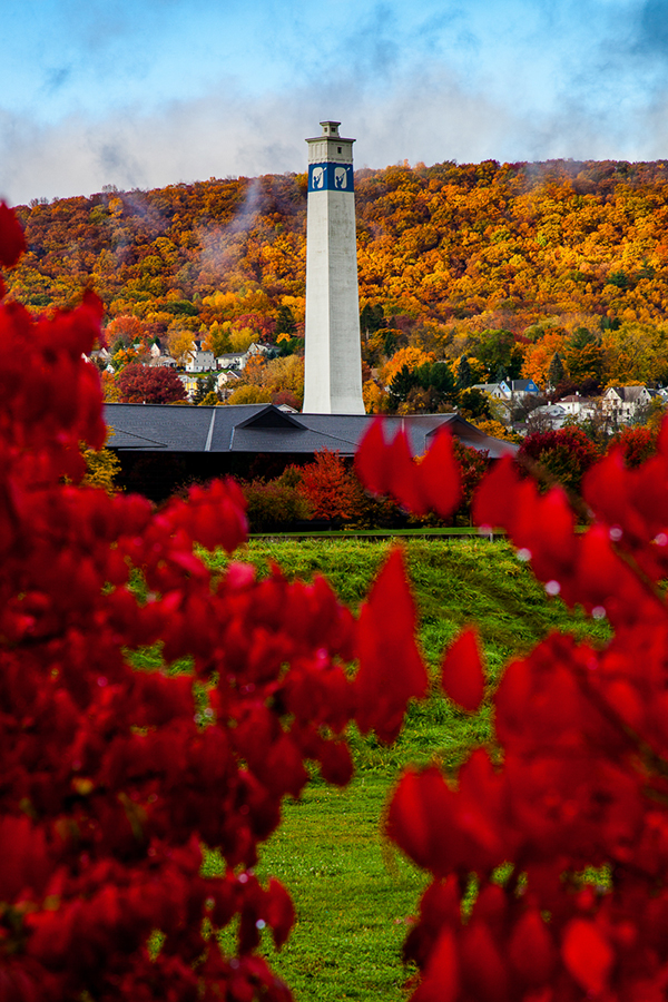 "Chris Walters ""Little Joe Tower - Fall Foliage"" 7x5 photography on metal $125. inquire for availability and additional ordering options"