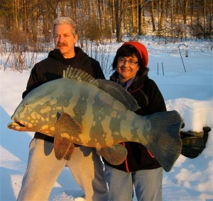 "Alan and Rosemary Bennett shown with ""Grouper"" fish glaze"