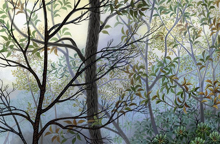 """Wynn Yarrow """"Lifting Fog"""" 11x17 acrylic gouache $1,600."""