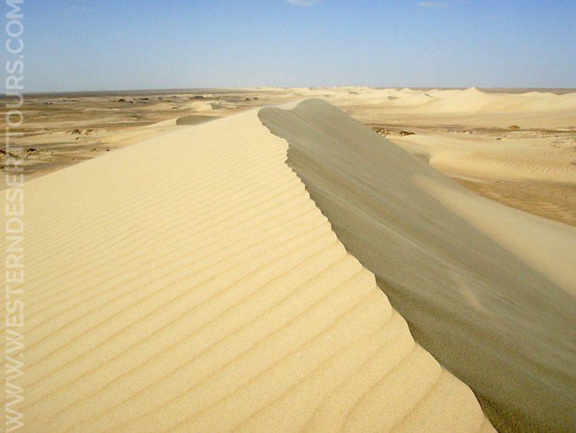 Al-Ghurabi sand dune near Bahariya Oasis in the Western Desert of Egypt