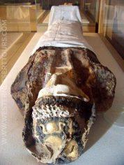 Mummy in the Golden Mummies Museum