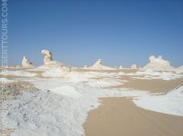 The White Desert's sculpture garden