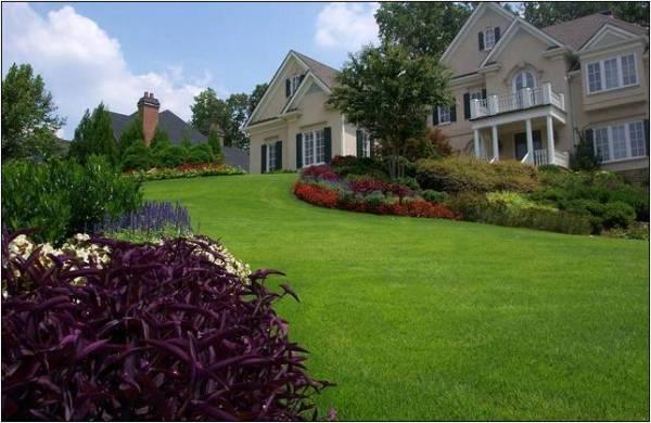 landscaping companies dallas