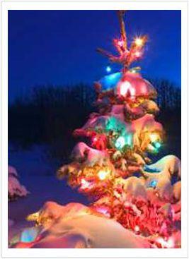 We wish everyone a safe. happy and healthy holiday season.