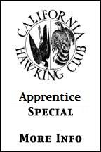 Western Sporting: Falconry Apprentice