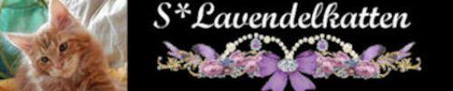 Lavendelkatten banner