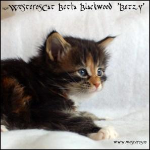 Betzy 4w