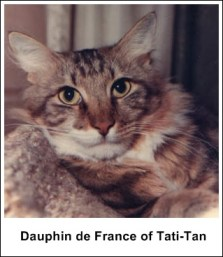 Dauphin de France of Tati-Tan t