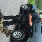K9 Det. Corey Peladeau and Beny, one of the Westford PD's two police dogs