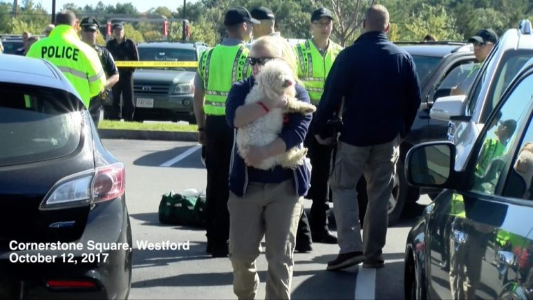 A dog that was discovered inside the victim's car was carried by the Westford's animal control officer on Oct. 12. PHOTO BY PATTY STOCKER