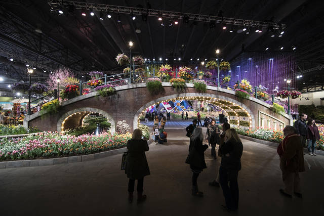 Image Result For Florists To Duke It Out In Philly At Interflora World Cup
