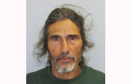 Ocean View man arrested for animal cruelty; dozens of dogs removed from Ka'u property