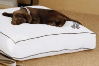 Heavenly Dog Bed | Westin Hotel Store