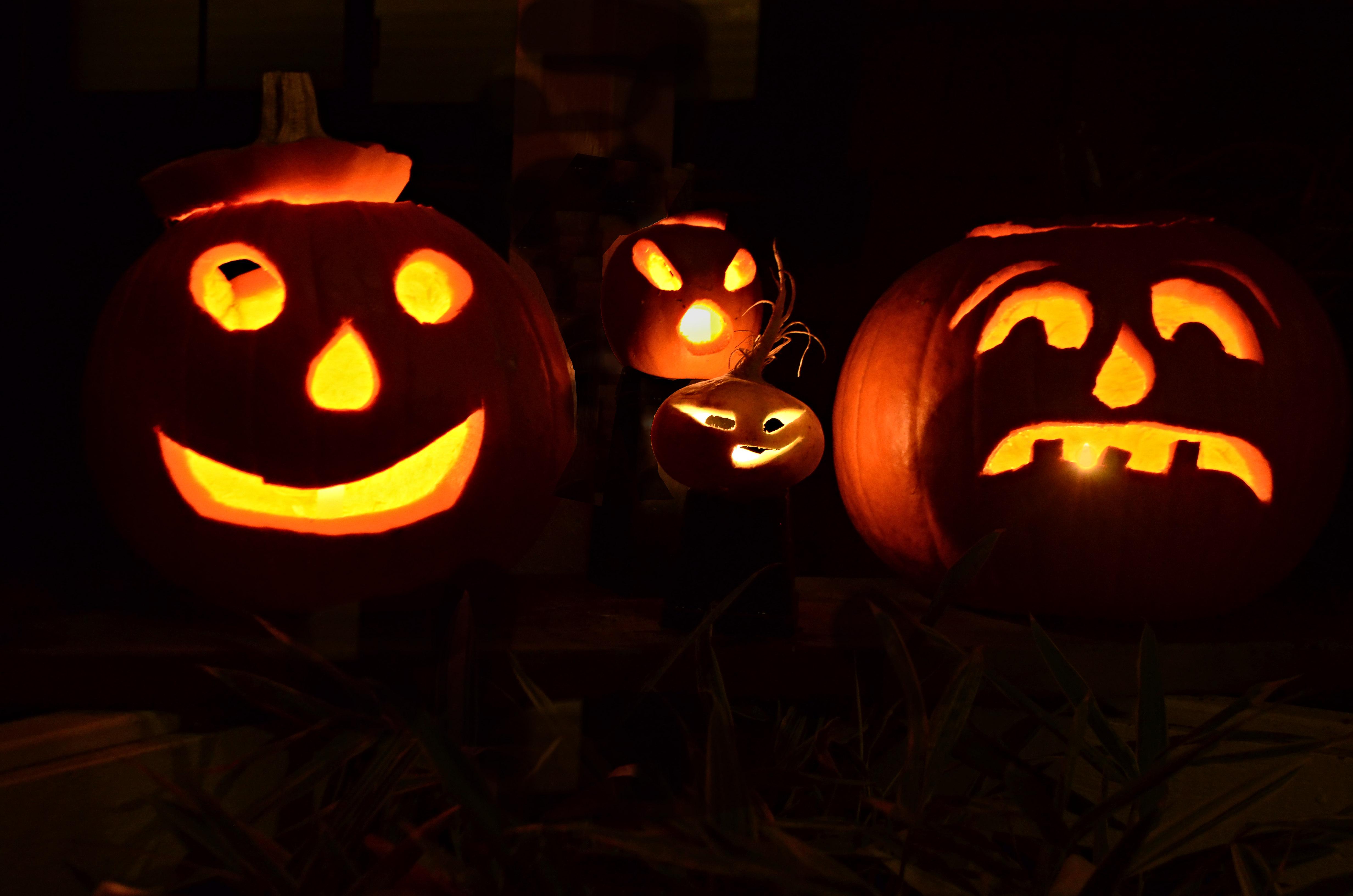 West Mayfield Community Halloween Night 2019