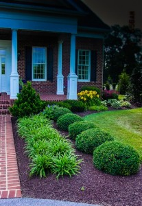5 videos mulch landscaping