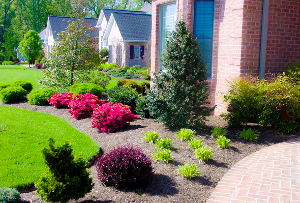 Beautiful Front Yard Landscaping 8 Insider Secrets!
